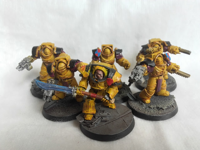 Imperial Fists: Cataphractii Squad with limited edition Praetor.