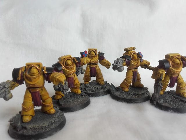 Imperial Fists: Cataphractii Squad.