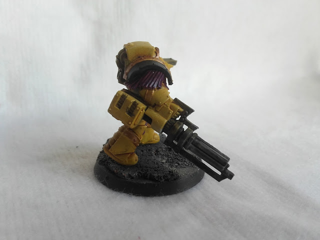 Imperial Fists: Cataphractii with an assault cannon.