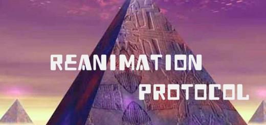 Reanimation Protocol