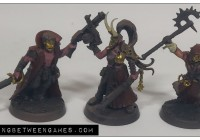 chaos cultists leaders wip